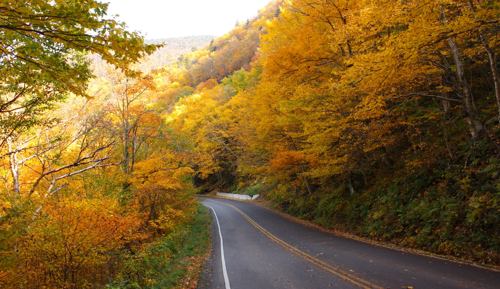 Fall Colors Tour to Dubuque, IA – October 16-17